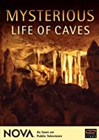 Nova: Mysterious Life of Caves [DVD] [Import]