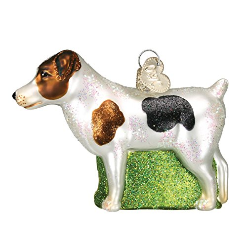 Old World Christmas Dog Collection Glass Blown Ornaments for Christmas Tree Jack Russell