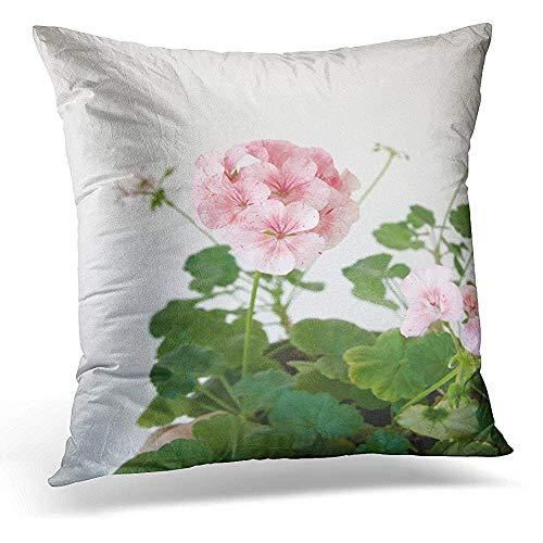 Asekngvo Funda de Almohada Decorativa Green Bloom Planta de Geranio Horizon Divas Ripple Mezclado con Flores Rosadas manchadas Funda de Almohada