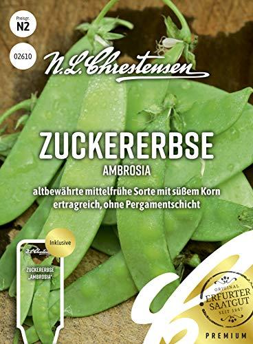 Zuckererbse Ambrosia, altbewährte mittelfrühe Sorte mit süßem Korn, Samen