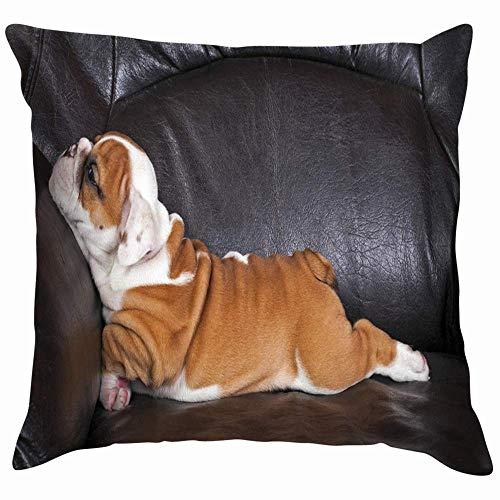 NA Bulldog Inglés Cachorro Relajándose En Animales Negros Fauna Perro Algodón Lino Hogar Decorativo Throw Pillow Case Funda de Cojín para Sofá Sofá