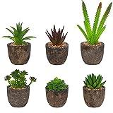 BELLE VOUS Mini Piante Finte da Interno con Vaso (Set da 6) - Piante Grasse Finte e Cactus con Vasi - Piante Finte da Esterno per Decorazioni Casa e Ufficio - Piantine Finte con Vasetto