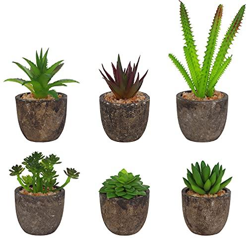 BELLE VOUS Kunstblumen im Topf Mini Kunstpflanzen im Topf (6 STK)- Sortierte Mini Sukkulenten Pflanzen & Kaktus - Deko Blumen Unechte Pflanzen für Haus, Büro, Tisch & Badezimmer