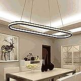JYXZ Control Remoto de atenuación Creativo Lámparas de araña Gel de sílice de Aluminio elipse Iluminación Colgante Minimalismo Moderno Focos de Techo para Sala de Estar Comedor Estudio Loft Bar