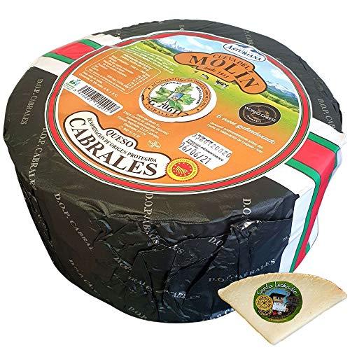 Queso Cabrales Denominación de Origen Protegida - Peso Aproximado 2,5 kilos - Cuña Degustación Queso de Oveja Curado de REGALO Queso Galardonado en varias ediciones con el premio World Cheese Award