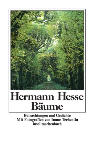 Bäume - Betrachtungen und Gedichte