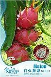 1 Pack de originales, 40 semillas / paquete, Pitaya blanca en el interior roja fuera, dulce fruta del dragón, Pitaya Cactus, muy delicioso # NF007