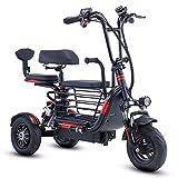 TTFC Triciclo eléctrico pequeño para Padres e Hijos Mini,Batería de Litio Plegable de Tres plazas,350 W, Plegable, 20 Km/H, Ajuste De 3 Velocidades, Adecuado for Adultos,Recoger a los niños en casa
