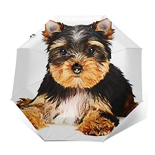 Paraguas Plegable Automático Impermeable Edad del Cachorro de Perro, Paraguas De Viaje Compacto a Prueba De Viento, Folding Umbrella, Dosel Reforzado, Mango Ergonómico
