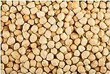 Germinación Las Semillas: Semillas orgánicas Garbanzos 90 Semilla de garbanzo no GMO