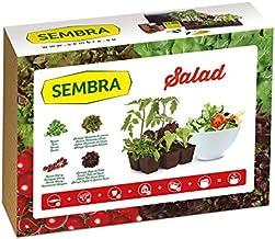 Amazon.es: Seed Box