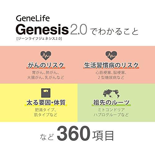 遺伝子検査キット<GeneLifeGenesis2.0(ジーンライフジェネシス)>解析項目数約360項目