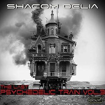 The Last Psychedelic Train, Vol. 3
