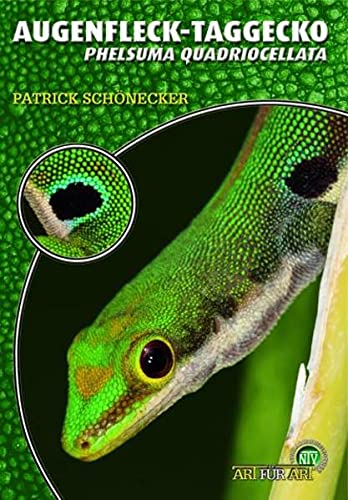 Der Augenfleck-Taggecko: Phelsuma quadriocellata
