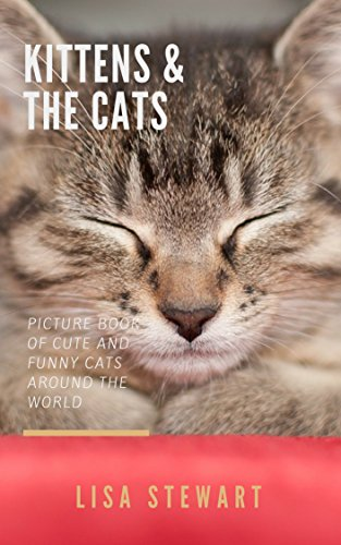 Kittens & The Cats: Picture Book of Cute and Funny Cats around the World, Great Photo Book for Kids and Adults