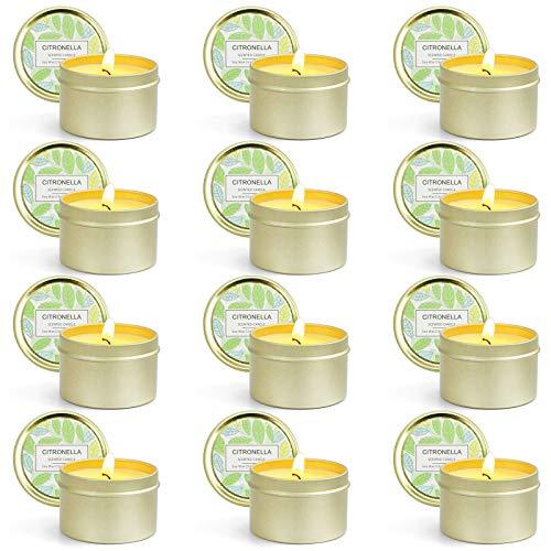 SCENTORINI 6 Candele Citronella Anti-zanzare per Interni ed Esterni