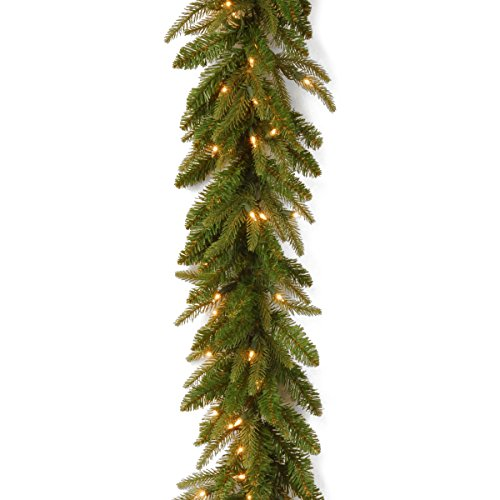 National Tree 9 Foot by 10 Inch Feel Real Fraser Grande Garland with 100 Clear Lights (PEFG4-330-9A)