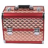 QHYY Cajas de joyería de aleación de Aluminio Caja de Almacenamiento multifunción de Doble Capa Caja de Herramientas de manicura de Tatuaje
