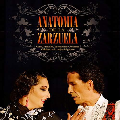 Anatomía De La Zarzuela (2 CD + DVD)