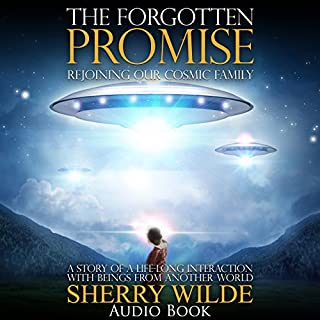 The Forgotten Promise cover art