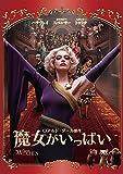魔女がいっぱい[DVD]