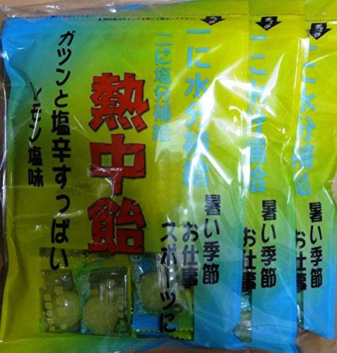 井関食品 熱中飴 レモン塩味 100g×3袋