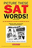 Picture These SAT Words!: All The Vocabulary You Need to Succeed on the SAT