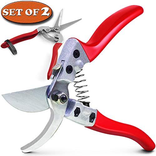 rose bush tools - 2