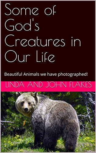 Some of God's Creatures in Our Life: Beautiful Animals we have photographed! (English Edition)