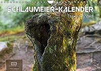 Schlaumeier-Kalender - Thema: Wald (Wandkalender 2022 DIN A4 quer): 12 tolle Motive aus dem Wald mit interessanten Fakten zum Thema Wald. (Monatskalender, 14 Seiten )