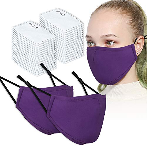 2PCS Adult Unisex Washable & Reusable Protective Face Masks with Filter Pocket + 30PCS PM2.5 Carbon Filters (Purple)