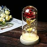 Rot Rose mit Glas Lampenschirm, TINYOUTH Rose Kunstseide Sparkle Rose, 2m/6.6ft 20 LED Streifen...