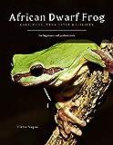 African Dwarf Frog: Care, Food, Tank Setup &...