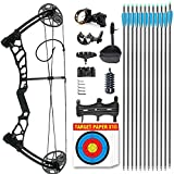 Wasp Youth Compound Bow for Hunting and Beginner Junior Complete Set Right Handed (Black)