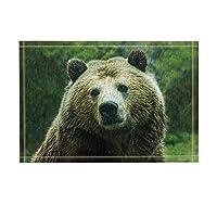 Assanu アニマルインテリアワイルドヒグマバスラグ滑り止め玄関フロア玄関屋外屋内フロントドアマットキッズバスマット15.7x23.6inバスルームアクセサリー