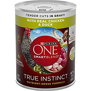 Purina ONE Natural Gravy Wet Dog Food, SmartBlend True Instinct Tender Cuts With Real Chicken & Duck – (12) 13 oz. Cans