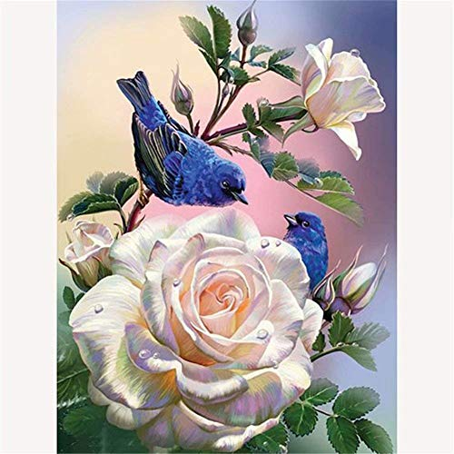 Diamond Painting 5D DIY Kits Cross Stitch 3D Diamond Full Drill Resin Crystal Rhinestone Embroidery Mosaic Pictures Art Stickers for Living Room Bedroom Home Decor M3 Rose Bird Round Drill,50x70cm