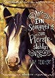 Ein Sommer zum Pferdestehlen - Mina Teichert