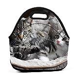 Lazy CatNeopreno Lonchera reutilizable portátil bolsa de almuerzo bolsa ligera para mujeres niñas y hombres niños bolsa de almuerzo bolsas