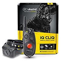 Dogtra iQ CliQ Remote Training Collar with Built-in Clicker? by Dogtra