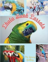 Photo Book Parrots: The Best Selection of 50 Exotic Parrot Photos from the Best Photographers in Manhattan