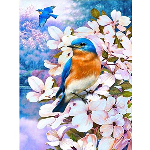 DIY Paint by Numbers, Oil Painting for Kids and Adults Flowers and Birds 15.7x19.7in 1 Pack by Tangbr