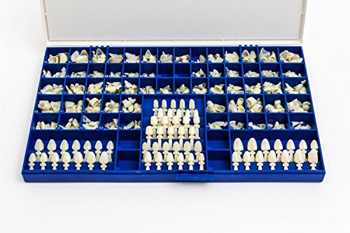 Polycarbonate Temporary Dental Crowns Kit 360 pcs with Crown Mold Guides