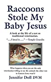 Raccoons Stole My Baby Jesus