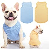 Dog Cooling Shirt 2 Packs - Soft Breathable Instant T Shirts, Comfortable Summer Clothes Vest, Absorb Water and Evaporate Quickly for Dogs Cats Puppy