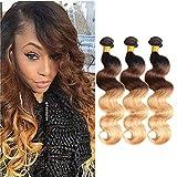 Best Hair Weave Blonde 3 Bundles - Ombre Brazilian Virgin Hair Body Wave Ombre Human Review