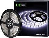 LE Striscia Luminosa LED 5M 24W, Impermeabile IP65, 300 LED 2835 Luce Nastro Luminoso Bianco Freddo 6000K per Decorazioni Esterni ed Interni, Strisce Flessibile 12V per Soggiorno Angoli Bui Automobili