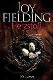 Herzstoß: Roman - Joy Fielding