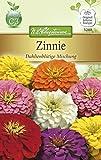 N.L. Chrestensen 5288 Zinnie Dahlienblütige Mischung (Zinniensamen)