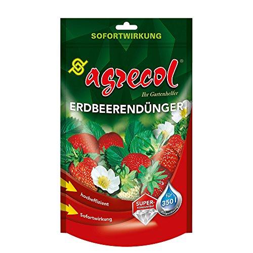 Premium Fraise Engrais Forêt Engrais pour fraises avec effet rapide – Pour 350 L d'eau hochkonzentriert et hochergiebig
